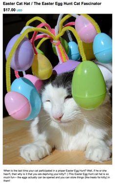 Cats Regretsy on Regretsy