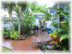 Tropical+Backyards | Lush tropical backyard lanai with gas BBQ for those peaceful Hawaiian ...