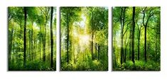 SUNDAY'S DEAL: Youk-art Decor 3 Panels Morning Sunrise Green Trees Landscape Sunshine Over Forest Photograph Printed on Canvas for Home Wall Decoration RETAILS @ $99.00, TODAY @ $28.88