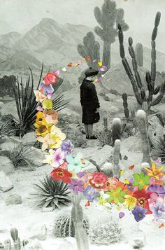 Collage by Ben Giles. Art Du Collage, Mixed Media Collage, Digital Collage, Collages, Kunst Online, Desert Flowers, Desert Cactus, Illustration Art, Illustrations