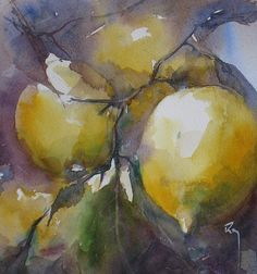 Citrons by Catherine Rey .just stunning Watercolor Fruit, Fruit Painting, Watercolor Sketch, Watercolor And Ink, Watercolour Painting, Watercolor Flowers, Painting & Drawing, Watercolors, Art Aquarelle