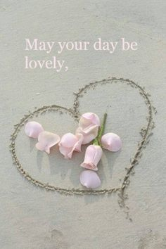 Have a lovely day!!