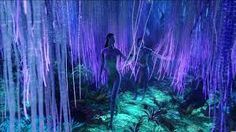 avatar movie tree of life pic - Google Search