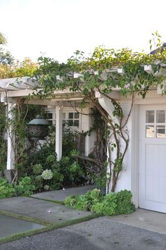 Front yard garden with succulents and trellis for climber... 'We' could adapt this idea for my front porch