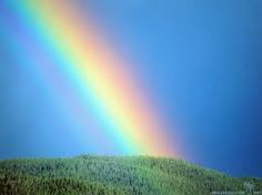 What is A Rainbow? Click and find out!