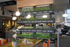 Lyfe kitchen's green restaurant design. Greens Restaurant, Restaurant Kitchen, Fast Food Restaurant, Restaurant Design, Restaurant Ideas, Fast Healthy Meals, Healthy Snacks For Kids, Juice Bar Design, Game Mobile
