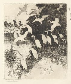 Heron Roost, etching by Frank W Benson, I like the way the white birds almost become negative space. Art Sketches, Art Drawings, Etching Prints, Cleveland Museum Of Art, Landscape Drawings, Elements Of Art, Bird Art, Art Techniques, Aesthetic Art