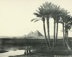 View Towards the Pyramids of Giza 1870