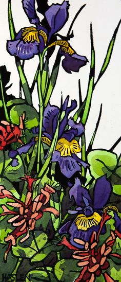 Irises - Hand coloured linocut by Andrew Haslen