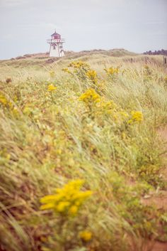 """Prince Edward Island, Canada - lighthouse - on my """"To Visit"""" list! Image Nature, Prince Edward Island, Anne Of Green Gables, What A Wonderful World, Canada Travel, Dream Vacations, Wonders Of The World, Travel Channel, Landscape Photography"""