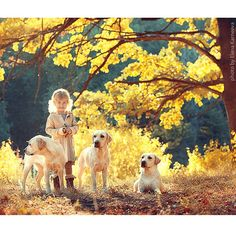 Photographer's Images of Kids & Dogs Will Leave You Breathless & Inspired Natural Background, Golden Days, Happy Pictures, Beautiful Children, Mans Best Friend, Wonderful Images, Children Photography, Best Dogs, Animal Pictures