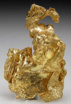 Twisted, flattened crystals of Gold. 3.5 grams, size 2.4 x 1.5 x 1 cm.
