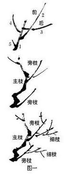 Image result for chinese painting techniques drawing rocks Sumi E Painting, Korean Painting, Japan Painting, China Painting, Crayon Painting, Japanese Drawings, Japanese Art, Chinese Brush, Chinese Art