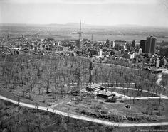 Sommet du mont Royal, 1962  Montreal   20 photos qui font revivre lhistoire de Montréal (PHOTOS)