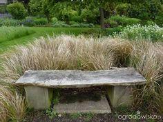 Ławka z deski, prosta w wykonaniu i jaka przydatna w tym ogrodzie