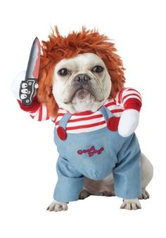Looking for a unique idea for your lovable pet this Halloween? Get this Deadly Doll Dog Costume and enjoy the fearful reactions from your Chucky Pup. Cute Dog Halloween Costumes, Pet Costumes, Easy Halloween, Chucky Halloween, Funny Costumes, Halloween Porch, Halloween Christmas, Costume Ideas, Scary Dogs