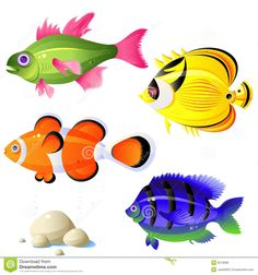 Collection Of Different Vector Funny Picture Cartoon Animals Panda Tiger Fish Goose Cow 25 Eps