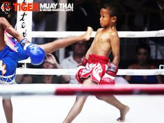 In Thailand, Muay Thai training starts at around five or six years old and is an integral part of Thai culture. Our trainers train their children to fight Muay Thai and it is a bonding experience for fathers and children. Often a family member (either an uncle or dad) trains the youngster.