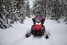 Best Lapland Christmas Moonlight Experience by Snowmobile from Rovaniemi