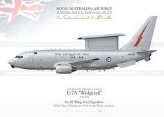 "E-7A ""Wedgetail"" RAAF TC-213"