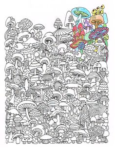 Adult Coloring Page - Mushrooms - Printable coloring page for adults - Part of the Hippie Kitsch adult coloring book A coloring page to hilight the Adult Coloring Book Pages, Coloring Pages To Print, Free Coloring Pages, Printable Coloring Pages, Coloring Sheets, Coloring Books, Colorful Drawings, Colorful Pictures, Mandala Coloring