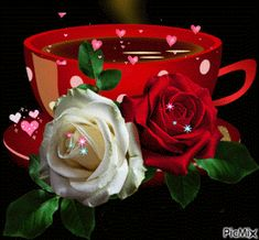 The perfect Coffee Flowers Heart Animated GIF for your conversation. Discover and Share the best GIFs on Tenor. Beautiful Love Pictures, Beautiful Gif, Beautiful Roses, Gif Café, Animated Gif, Gif Feliz Viernes, Rosas Gif, Good Morning Gif Images, Coffee Flower