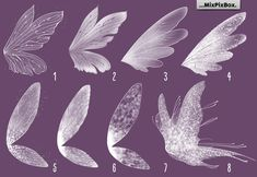 Fairy wings, Overlays, White wings, PNG, Photo Overlays, clipart, photoshop, realistic, fine art, fairy dust, transparent, Fantasy