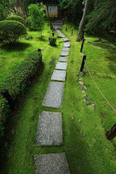 苔 飛び石 金地院 京都 風情 南禅寺