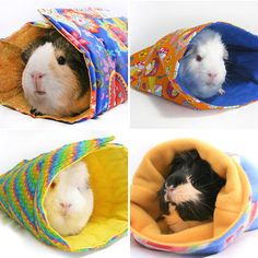 Guinea Pig Sleeping Bags — what?!?