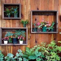 verticle garden in fence
