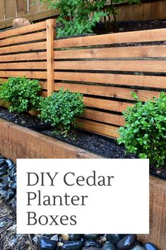 balcony privacy screen An eyesore no more! DIY Planter boxes to cover-up the ugly parts of your backyard. Use a trellis as a screen to eliminate eyesores. Planter Box With Trellis, Cedar Planter Box, Diy Planter Box, Diy Trellis, Diy Planters, Garden Planters, Privacy Screen Plants, Privacy Planter, Privacy Screen Outdoor