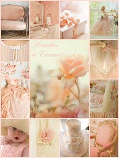 Peaches & Cream Colour Board, Color Box, One Color, Word Collage, Color Collage, Colours That Go Together, Shades Of Peach, Mood Colors, Colorful Fruit