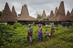 Sumba Island wainyapu-village