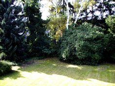 Garten in Köln