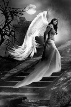 She had never really been free before. But now she had to spread her wings and leap off the edge of the world into nothing, to do what needed to be done. Angels Among Us, Angels And Demons, Dark Angels, Fallen Angels, Guerrero Dragon, Gothic Angel, I Believe In Angels, Ange Demon, Angel Pictures
