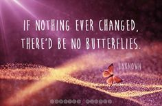 If nothing ever changed there'd be no butterfly