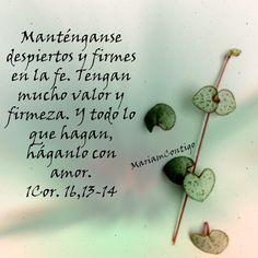 ¡Oh Señor, ten piedad de mi!  ¡Oh Señor; defiéndeme contra el enemigo y líbrame de todo mal! Que el Señor se digne concederme la gracia para triunfar sobre todos mis adversarios.  Que el Señor me libere continuamente de todos mis males.  Señor, socórreme y sálvame, Tú que me has redimido por Tu Cruz y Tu valiosa sangre.  ¡Así sea! Querido Padre celestial, danos un corazón de niño p entender todo de buena manera MARIA REINA Y SEÑORA POR SIEMPRE/ MI REINA MADRE ORACIÓN PARA HOY 130116