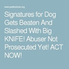 Signatures for Dog Gets Beaten And Slashed With Big KNIFE! Abuser Not Prosecuted Yet! ACT NOW!