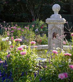 Old-Fashioned Flowers - •Old-Fashioned Flowers   We often look back and take comfort in the nostalgic.  That's why plants such as hydrangeas, lavender, Russian sage, moonflower, impatiens, and celosia are blooming in popularity.