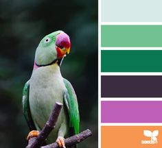 #ColorpaletteforKCH