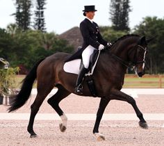 http://blog.classic-equine.com/2013/01/start-the-new-year-off-right-riding-improvements/