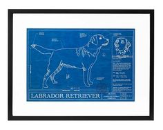Dog Blueprints from Uncommon Goods (poodle please!), $185