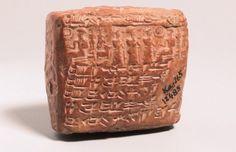 ARKEOFİLİ /// Kısırlık 4.000 Yıl Önce Kayseri'de Teşhis Edildi