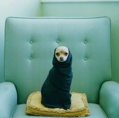 Another Lucy Snowe photo.