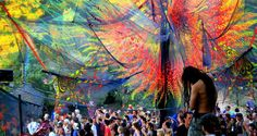 I don't know what festival this is, but the canopy is breathtaking