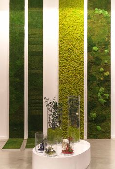 4 vertical gardens with natural preserved plants and mosses by Monamour Natural Design in Estampa 2013