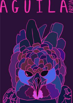 My Illustration Blog AnimalesDelMundo AnimalesDelMundoEcuador Ecuador animales animals illustration ilustración Aguila Arpia Eagle