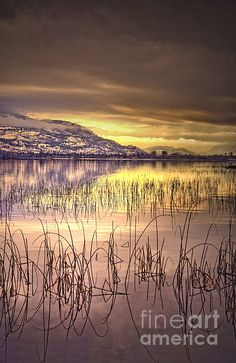 Winter Solstice, Okanagan Lake, British Columbia, Canada | Tara Turner