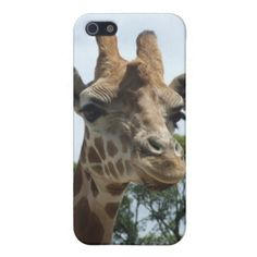 Giraffe iPhone Case iPhone 5 Cover online after you search a lot for where to buyDeals          	Giraffe iPhone Case iPhone 5 Cover Review on the This website by click the button below...