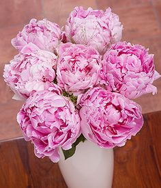 A wonderful arrangement of pretty Peonies in a gorgeous shade of pink and surrounded by Panicum Grass. Delivery 23 gbp